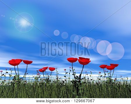 Poppies in the grass by beautiful day with sun - 3D render