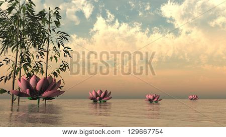 Pink lily flowers and bamboos upon water by sunset - 3D render