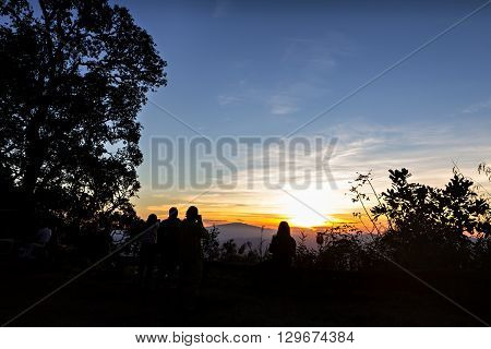 People and trees silhouetted with stunning sunset