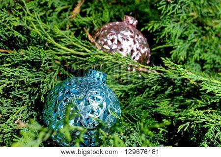 Pink and blue Christmas balls on green pine needles Santa Claus Christmas http://www.bigstockphoto.com/cs/account/uploads/contribute?edit=129676181#categoriestime