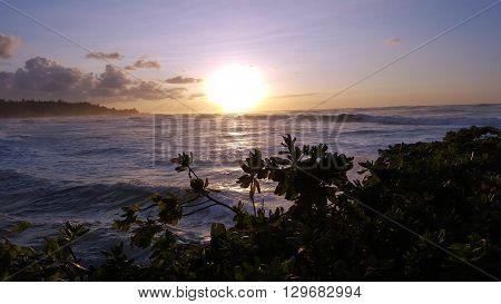 Beautiful Sunset over the ocean with waves moving to shore on the North Shore of Oahu with Napakaa trees in the forground.