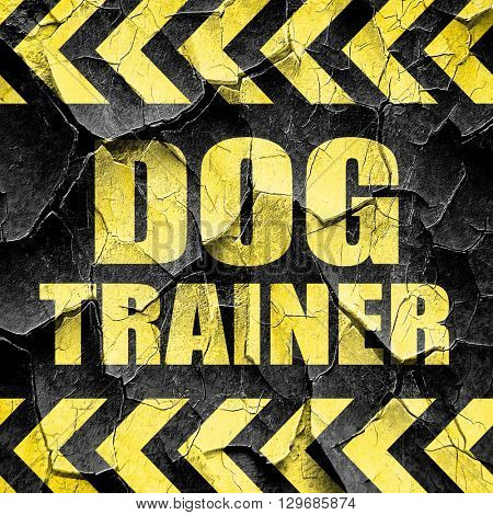 dog trainer, black and yellow rough hazard stripes