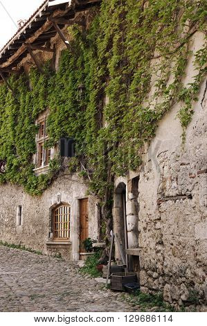 Old stone house at medieval village Perouges in France with green lianas climbing up the wall