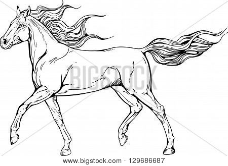 Image of a horse with waving mane and tail.