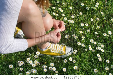 Woman Picking Daisies In The Field