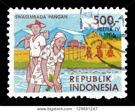 INDONESIA - CIRCA 1986 : Cancelled postage stamp printed by Indonesia, that shows Agriculture.