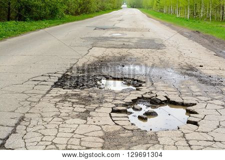 Pits of water on the asphalt road in the forest