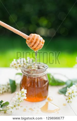 Honey with wooden honey dipper and glass jar and flowers.