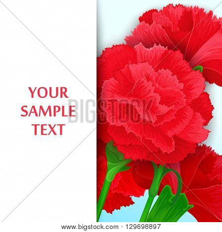 Just template with bouquet of red carnations and free space for message.