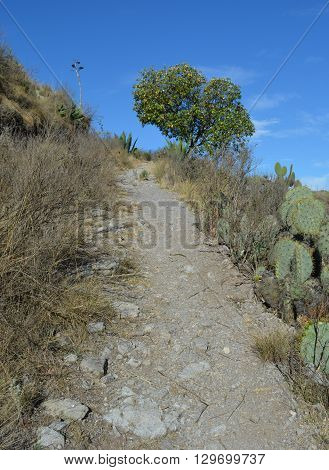 A road in a hill, Pachuca Hidalgo