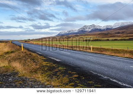 Empty black asphalt road green-yellow field and snowcapped mountains under blue sky Beautiful landscape in early winter of Iceland