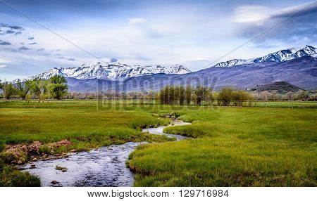 Creek running through the lush fields and snow capped mountains in the backdrop in Utah