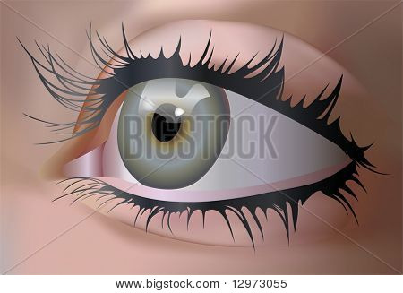 ojo de Vector