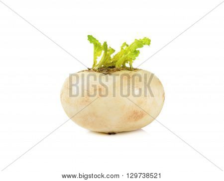 Mini White Turnips Isolated On White