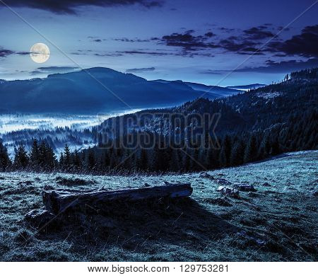 Coniferous Forest In Foggy Romanian Mountains At Night