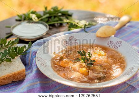 Russian style cabbage soup in a plate and a hand carved wooden spoon