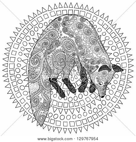 Fox hunt. Adult coloring page for antistress art therapy. Jumping fox in zentangle style. Template for t-shirt, poster or cover. Vector illustration.