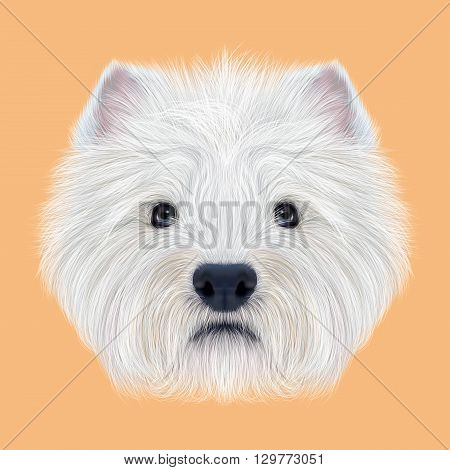 Illustrated Portrait of West Highland White Terrier. Cute fluffy white face of domestic dog on peach background.