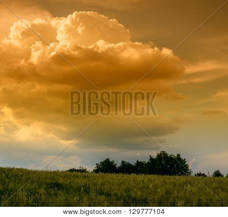clouds and field spring landscape  evening  rural