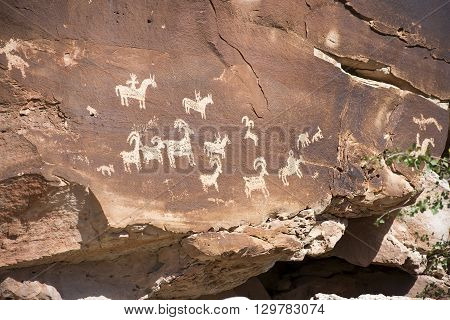 Ute Petroglyphs in Arches National Park, Utah, USA