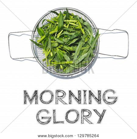 Morning Glory sliced raw material in aluminum basket to cooking to fried on white background in my kitchen isolate photo and have design my font free hand word