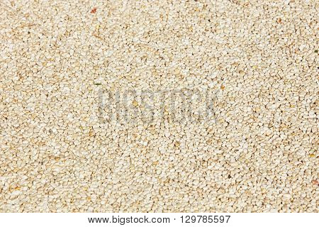 rough texture surface of exposed aggregate finish Ground stone washed floor made of small sand stone in light brown color
