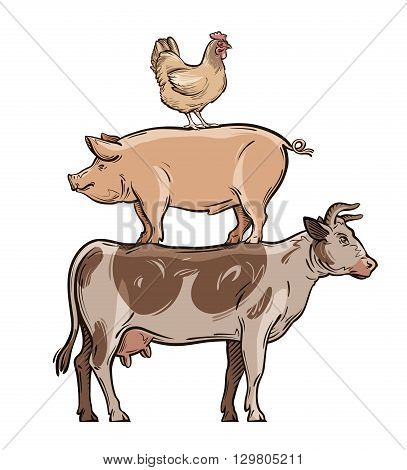 farm animals. cow, pig and chicken. vector illustration