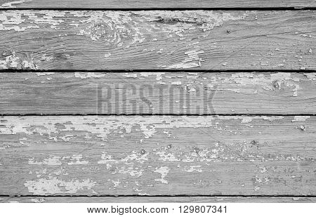 Wooden planks in a row white enamel. Background of weathered painted wooden plank.