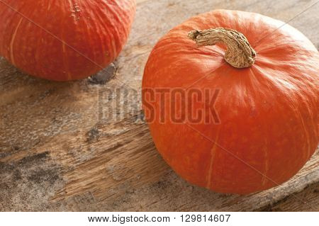 Top down view on two orange pumpkins with dried up stem over old weathered wooden table