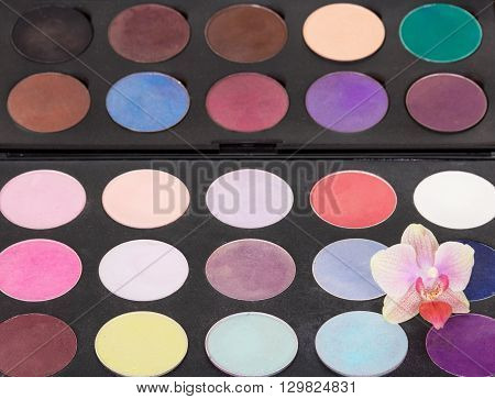 Palette of colorful eye shadow with orchid flower on a black background.