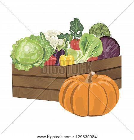 Illustration of wooden box filled with freshly picked vegetables. Vector illustration EPS 10.