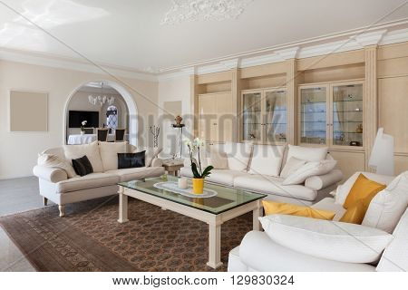 living room in luxury home, comfortable white divans in classic style