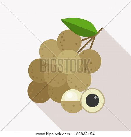 longan icon with long shadow, flat design