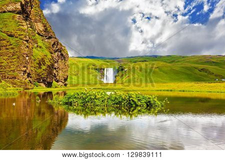 In the middle of the pond picturesque flower beds. Impressive waterfall Skogafoss reflected in small pond. Fantastic reflection