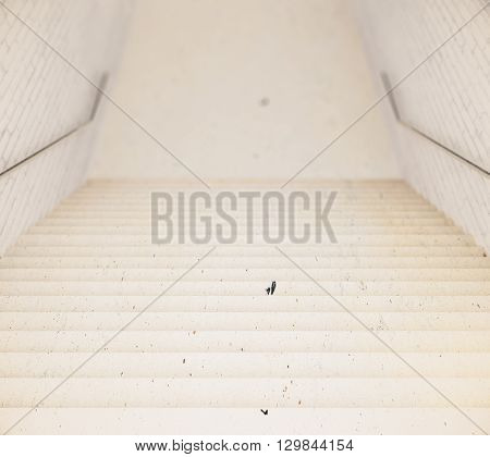 Stairs leading to empty floor. Mock up 3D Rendering