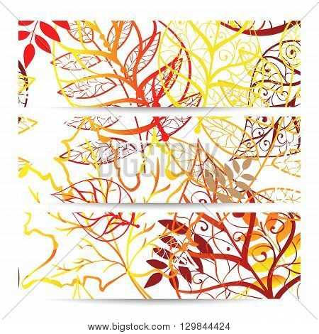 Collection banner design, colorful autumn background, vector illustration.
