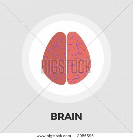 Human brain icon vector. Flat icon isolated on the white background. Editable EPS file. Vector illustration.