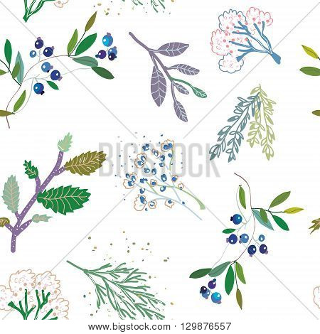 Herbal medicine plants seamless pattern vector graphic illustration
