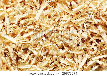 A lot of wooden sawdust texture for a background