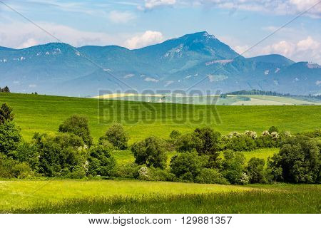 Nature In Liptov Region, Slovakia In Summer 2015