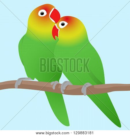 Vector illustration of lovebirds parrots. Love. Pair of birds.