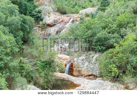 A waterfall in the Poort River next to the Prince Alfred Pass in the Outeniqua Mountains
