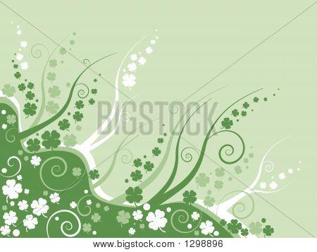 Floral Clove