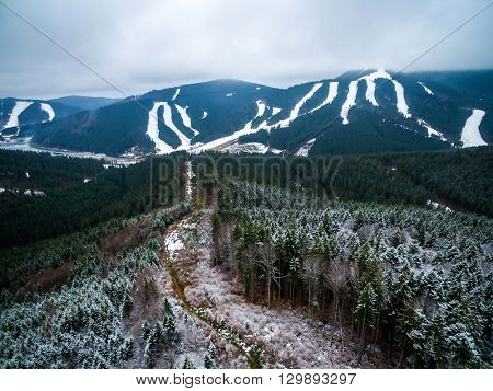 beautiful mountain landscape with pine forest and view on the ski resort of Bukovel, Ukraine