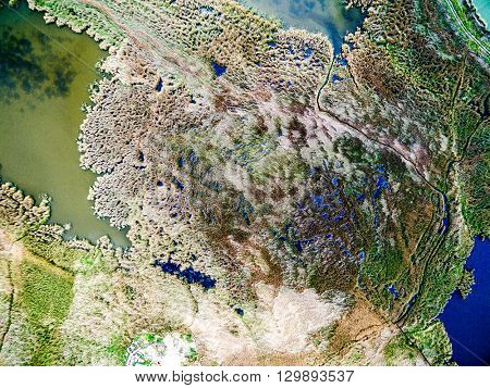 beautiful view of the lake overgrown with reeds, aerial photo