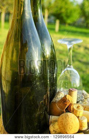 Old used vine corks cider bottles and glass in the garden Normandy France