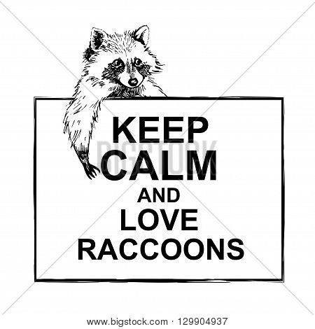 Funny and touching raccoon lies on a banner keep calm and love raccoons  hand drawn engrave sketch vector illustration. Keep calm and love a raccoon