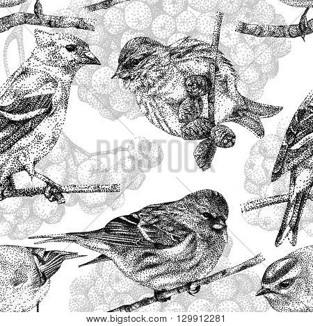 Seamless pattern with different birds and plants drawn by hand with black ink. Graphic drawing pointillism technique