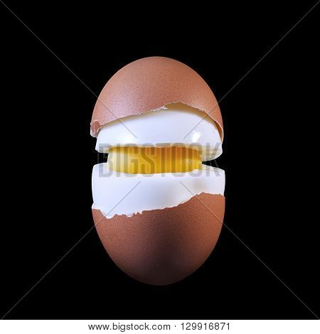 Boiled egg in a cut. all components of the eggs shown Closeup