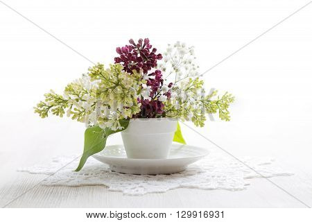 Branch Of Bird-cherry Tree In A Small White Vase